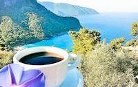 ocean view with coffee cup and purple flower
